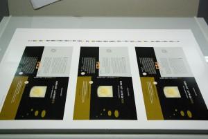 IMGP3206 - Copie